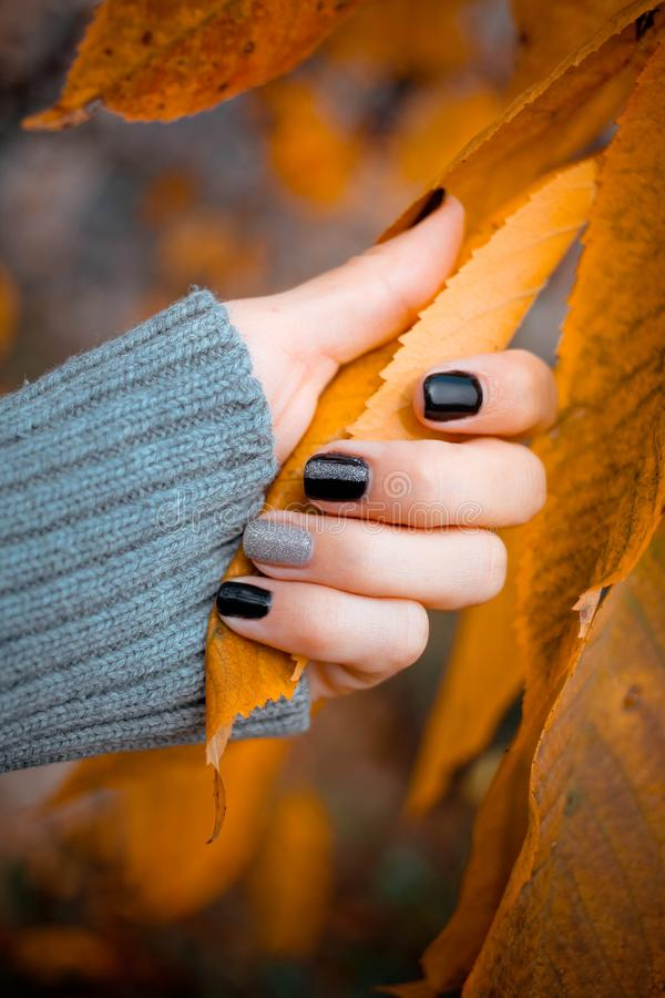 Beautiful hands with manicure hold autumn leaves.Manicure - Beauty treatment photo of nice manicured woman fingernails. stock photo