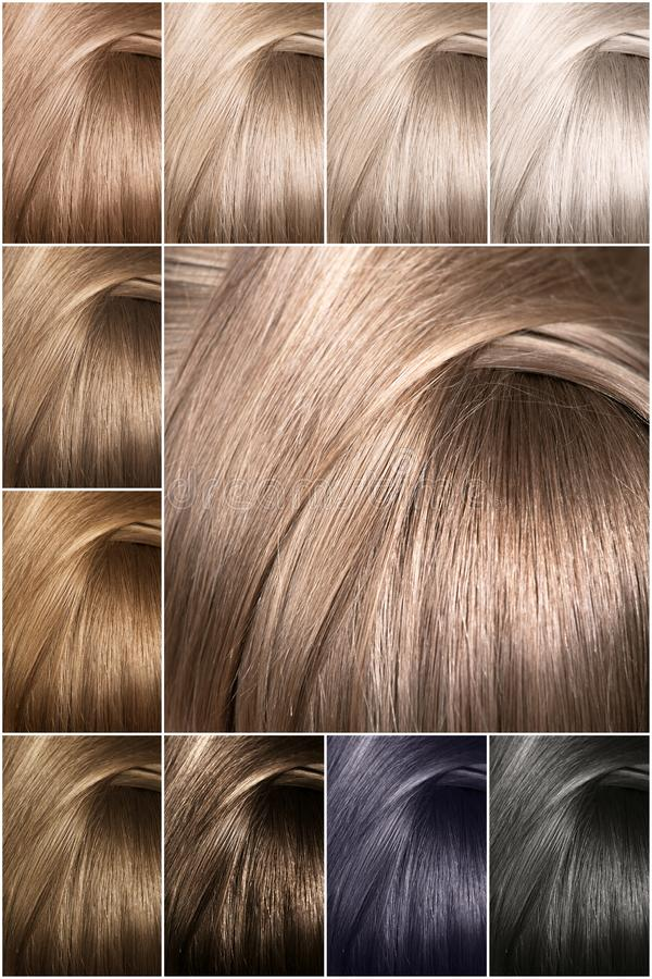 Color chart for tints. Dyed hair color samples arranged on a card in neat rows. stock image
