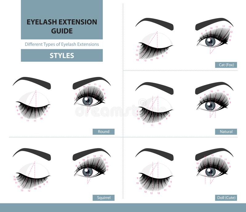 Different types of eyelash extensions. Styles for the most flattering look. Infographic vector illustration stock illustration