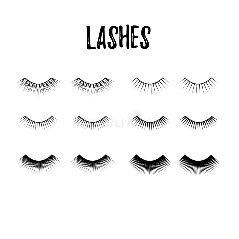 Eyelash collection. Thick and long lashes for mascara extension. Beauty logo. Vector icon royalty free illustration