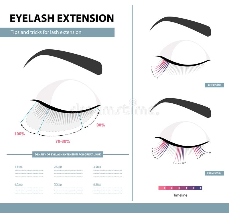 Eyelash extension guide. Density of eyelash extension for great look. Tips and tricks. Infographic vector illustration. Template stock illustration