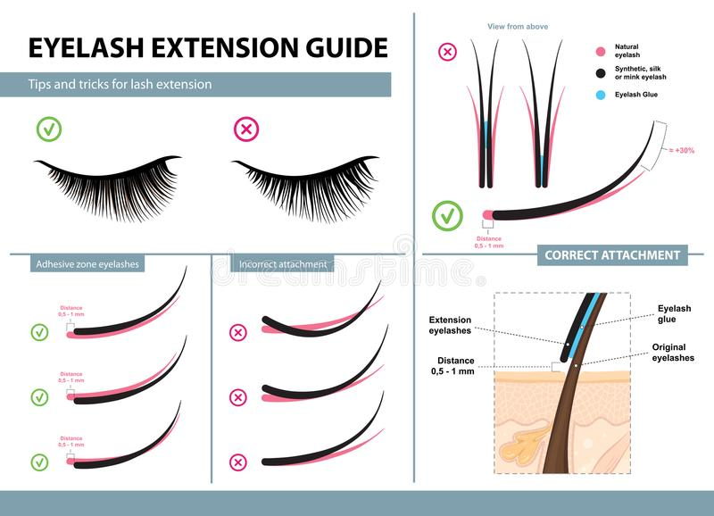 Eyelash extension guide. Tips and tricks for lash extension. Infographic vector illustration. Correct and incorrect attachment royalty free illustration