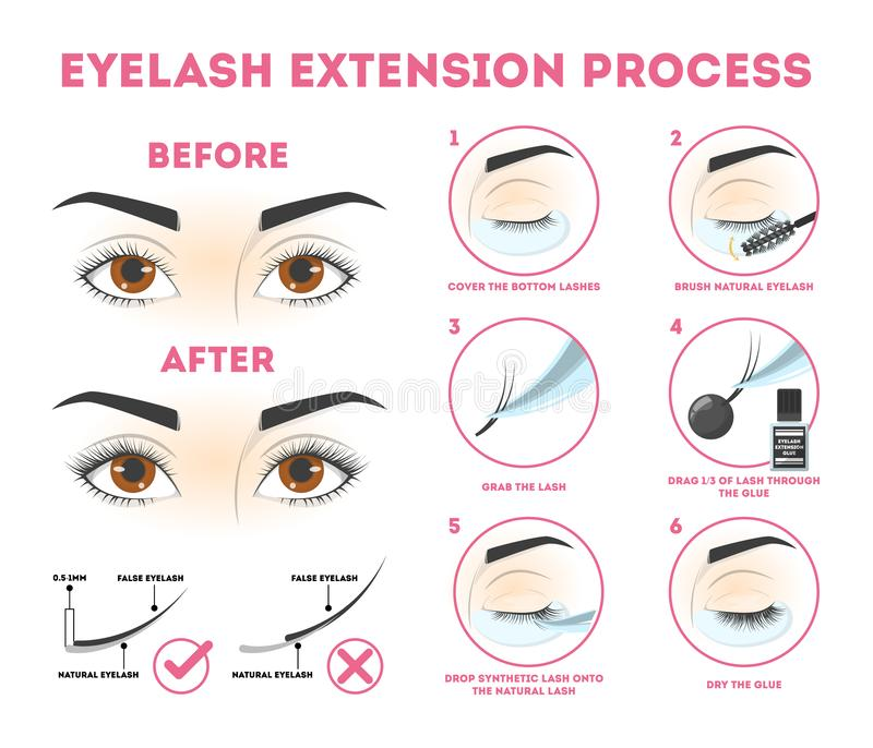 Eyelash extension guide for woman. Infographic with eyelashes royalty free illustration