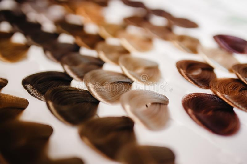 Palette hair color. stock photo