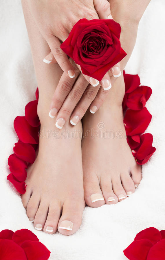 Pedicure Manicure Spa Hands Red Roses White Towel royalty free stock photo
